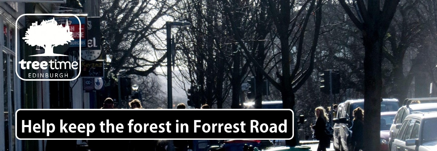 Help keep the forest in Forrest Road
