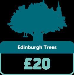 Edinburgh Trees £20