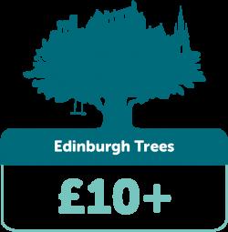 Edinburgh Trees £10+