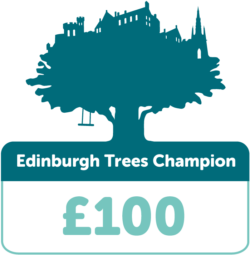 Edinburgh tree champion £100