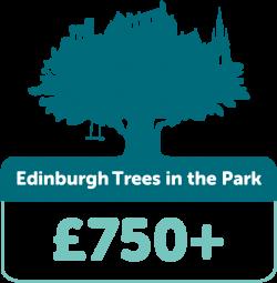 Edinburgh trees in the park £750+