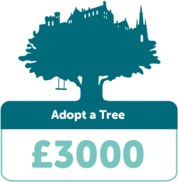 Adopt a tree £3000