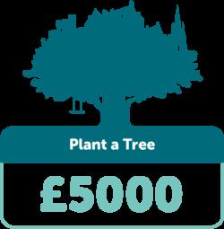 Plant a tree £5000