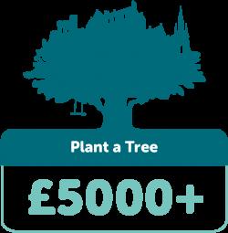 Plant a tree £5000+