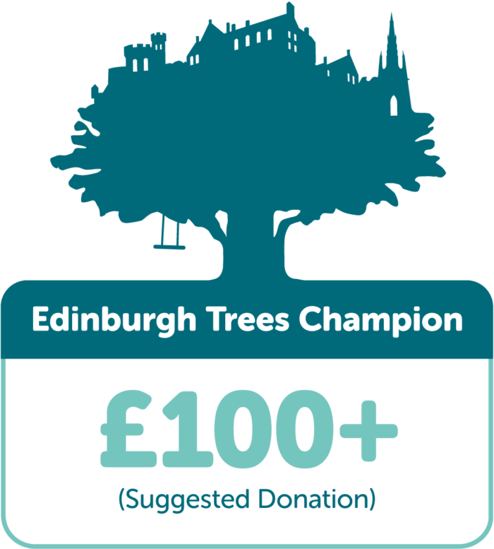 Edinburgh Trees Champion £100+ (suggested donation)