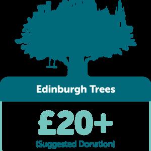 Edinburgh Trees £20+ (suggested donation)