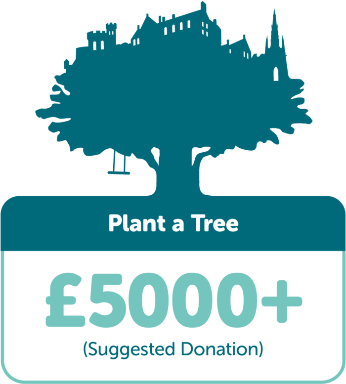 Plant a Tree £5000+ (suggested donation)