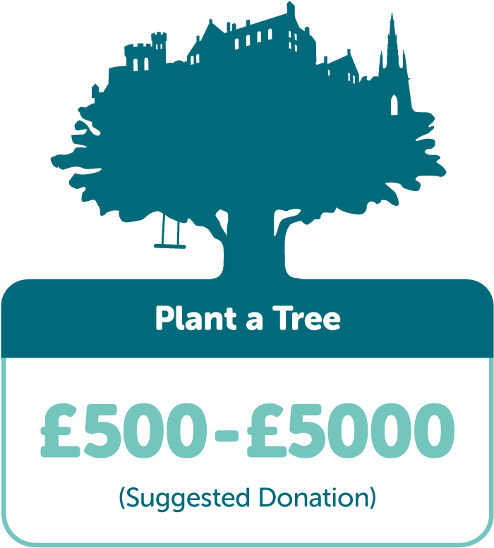 Plant a Tree £500-£5000 (suggested donation)